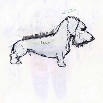 cane-per-copertina-home copia